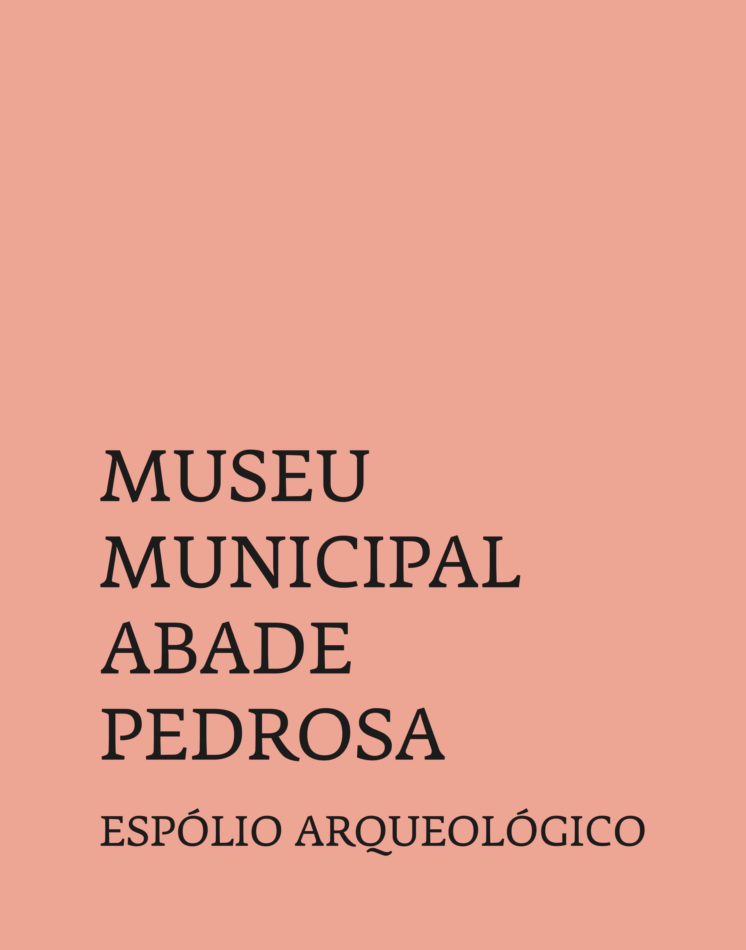 Museu Municipal Abade Pedrosa – Espólio Arqueológico
